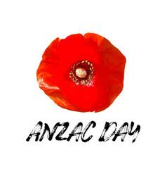Anzac day card bright poppy flower vector
