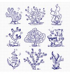 Ballpoint pen drawing seaweeds corals underwater vector