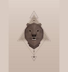 Brown bear head geometric silhouette vector