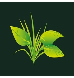 Eco book environment nature flora graphic vector