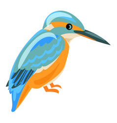 kingfisher icon cartoon style vector image
