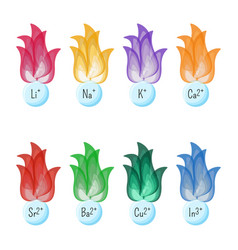 metal ions flame test colors educational vector image