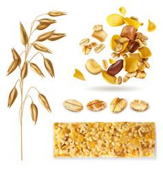 Realistic muesli cereal set vector