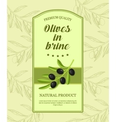 Retro label for olives in brine with branch of vector