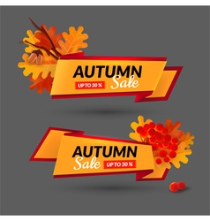 Set with banners Autumn sale event vector image