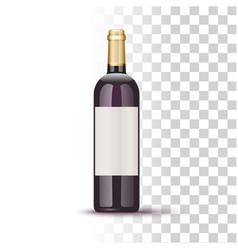 vine bottle vector image