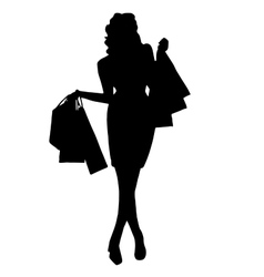 Girl with purchases vector image