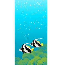 Two striped coral fishes under water vector