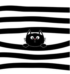 black cat kitten face head holding line vector image