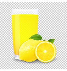juice and slices of orange vector image
