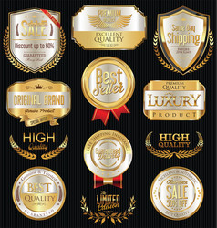 luxury golden retro labels collection 1 vector image