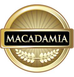 macadamia gold label vector image