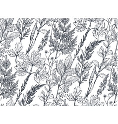 Seamless pattern with hand drawn herbs and vector