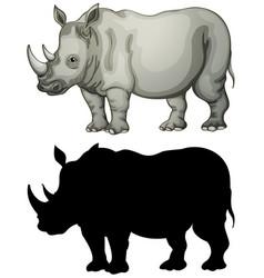Set of rhinoceros character vector