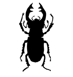 Silhouette of stag-beetle vector