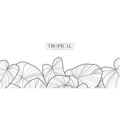 tropical leaf natural background vector image