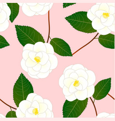 white camellia flower on pink background vector image