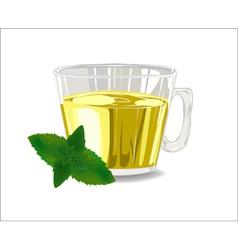 Glass cup of tea with mint leaves vector image vector image