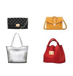 colorful woman handbag set vector image