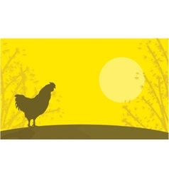 Silhouette of rooster landscape at sunset vector