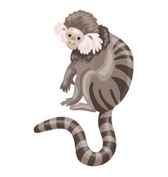 striped monkey icon cartoon style vector image