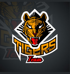 Tiger face for team sport theme on black vector