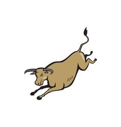 Texas Longhorn Bull Jumping Cartoon vector image vector image