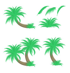 set of palm trees and leafs vector image