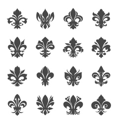 French royal lily flowers vector image vector image