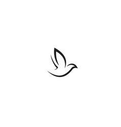 creative bird logo design vector image