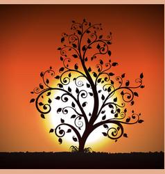 decorative tree on sunset background vector image