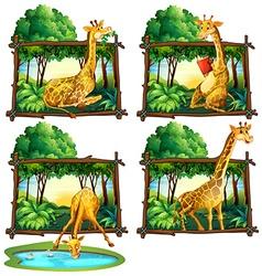 Four frames of giraffes in jungle vector