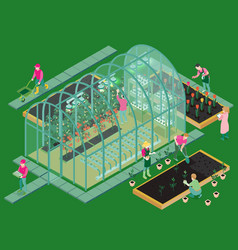 greenhouse isometric composition vector image