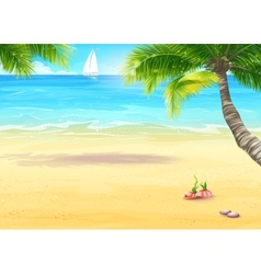 sea shore with palm trees and seashells vector image
