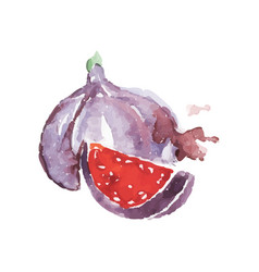 Watercolor painting with whole and little piece of vector