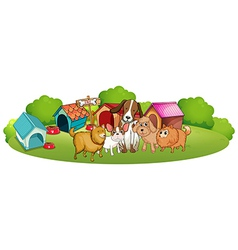 Cute dogs outside the doghouses vector image vector image