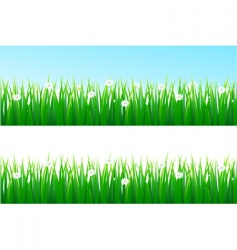 grass background vector image vector image