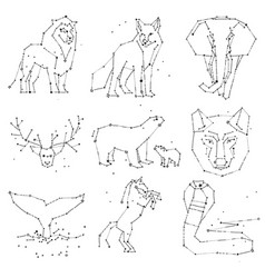 collection hand draw animals constellation on vector image