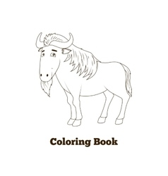 Coloring book wildebeest african savannah animal vector