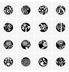 Flower round icons vector image