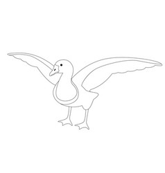 goose lining draw front vector image