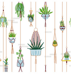 green macrame house plant seamless pattern vector image