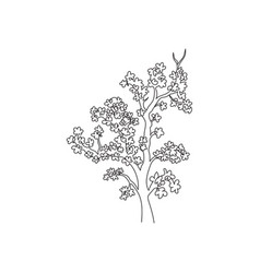 single continuous line drawing beauty japan vector image