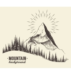 Sketch mountains fir forest sunset drawn vector