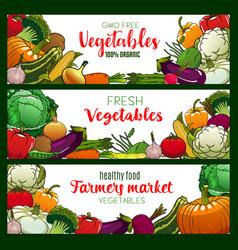 Vegetarian food vegetables and farm veggies vector