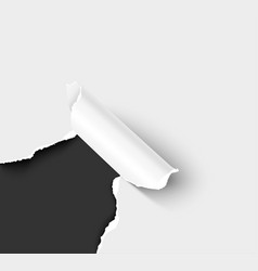 white paper sheet with torn hole corner vector image