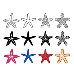starfish icon set vector image vector image