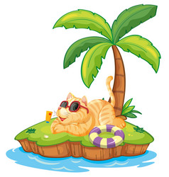 cat on the summer island vector image