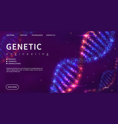 genetic engineering landing page shine dna vector image