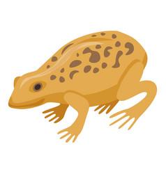 Ground frog icon isometric style vector